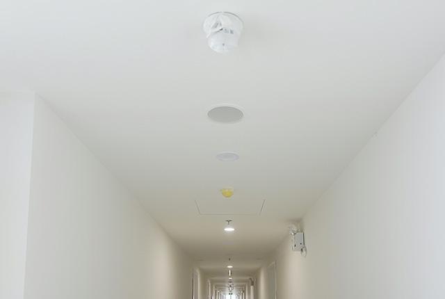 Công tác thi công lắp đặt các thiết bị hành lang căn hộ tầng 20 block B
