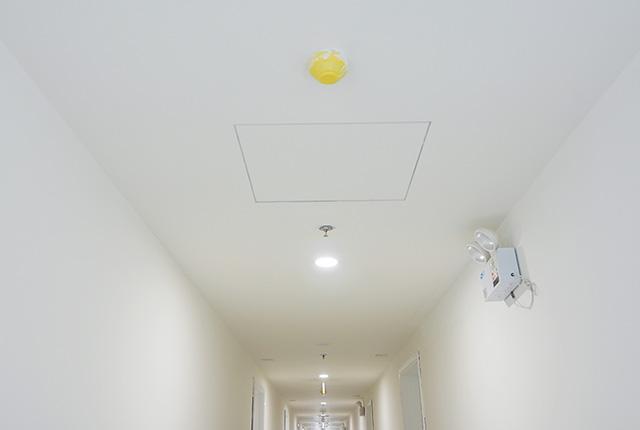 Công tác thi công lắp đặt các thiết bị hành lang căn hộ tầng 20 block C