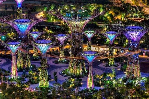 Vườn cây ánh sáng