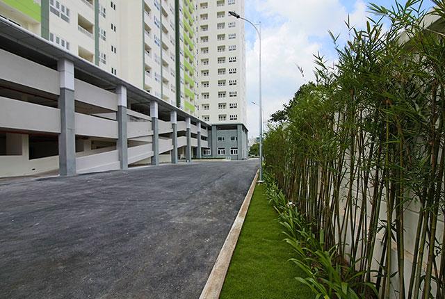 Công tác trồng cây xanh khu vực đường nội bộ