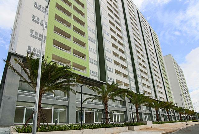 Công tác thi công và trồng cây xanh khu vực mặt tiền tòa nhà